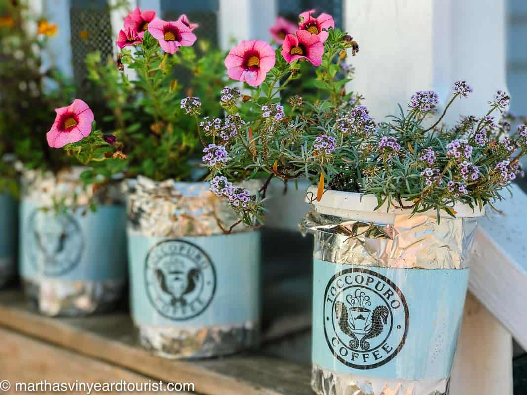 Toccopuro coffee bags used as planters