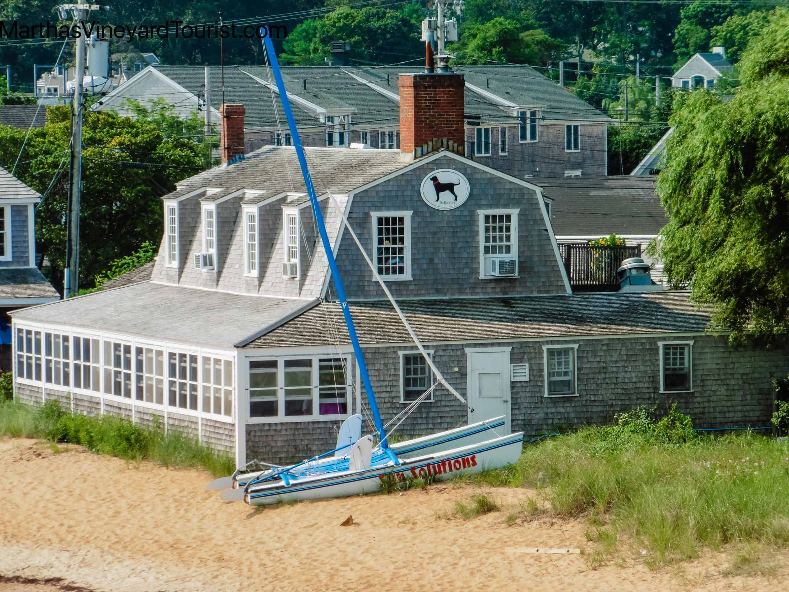 The Black Dog Store in Vineyard Haven