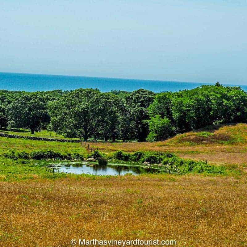 Rolling hills bounded by the Atlantic Ocean, a typical Chilmark scene.