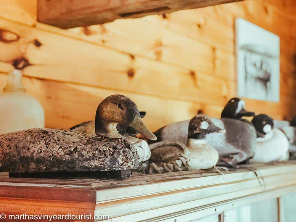 duck decoys at Long Point