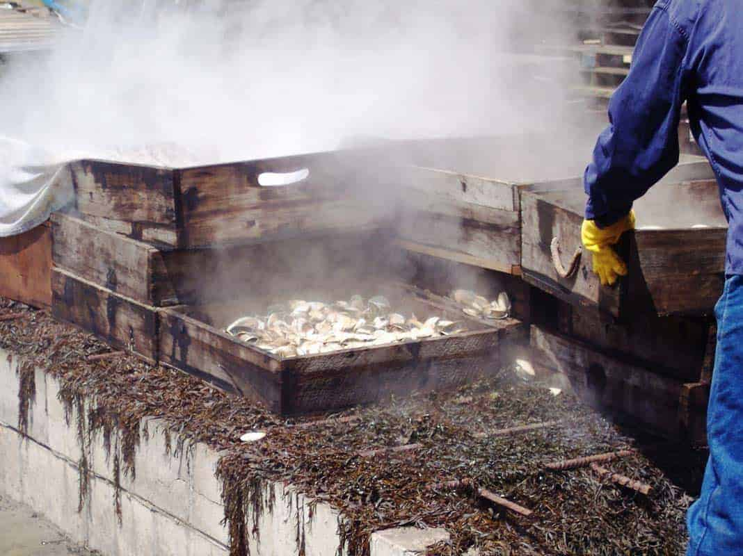 A New England clambake with steam and seafood