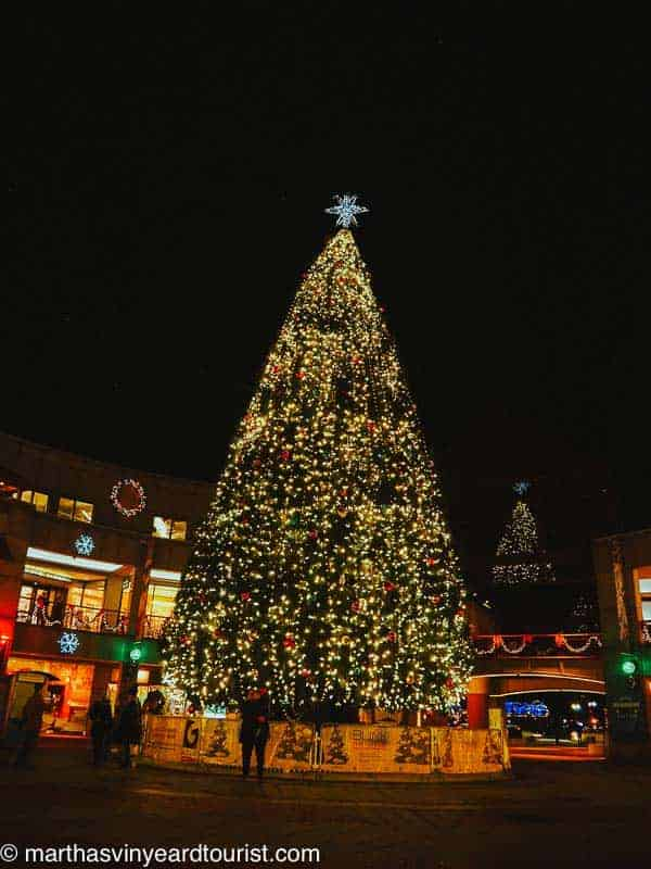 Christmas tree at Faneuil Market Place