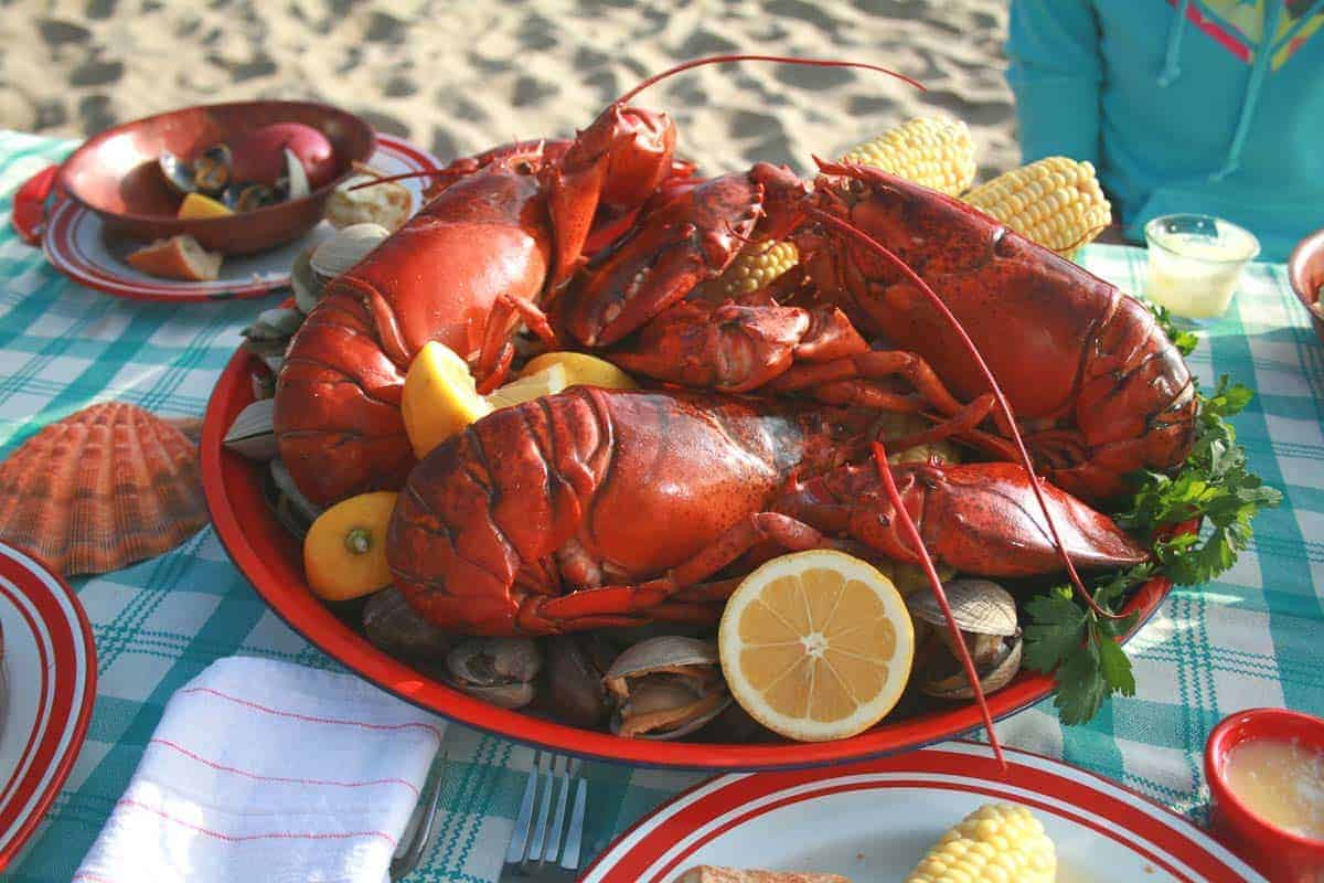 lobster on a plate during a clambake beach picnic