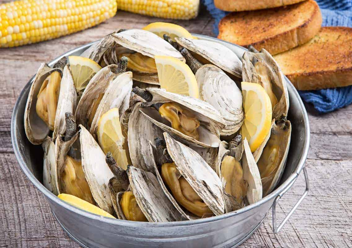 steamed clams in a bucket