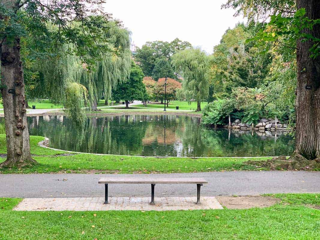 The Boston public garden bench from Good Will Hunting