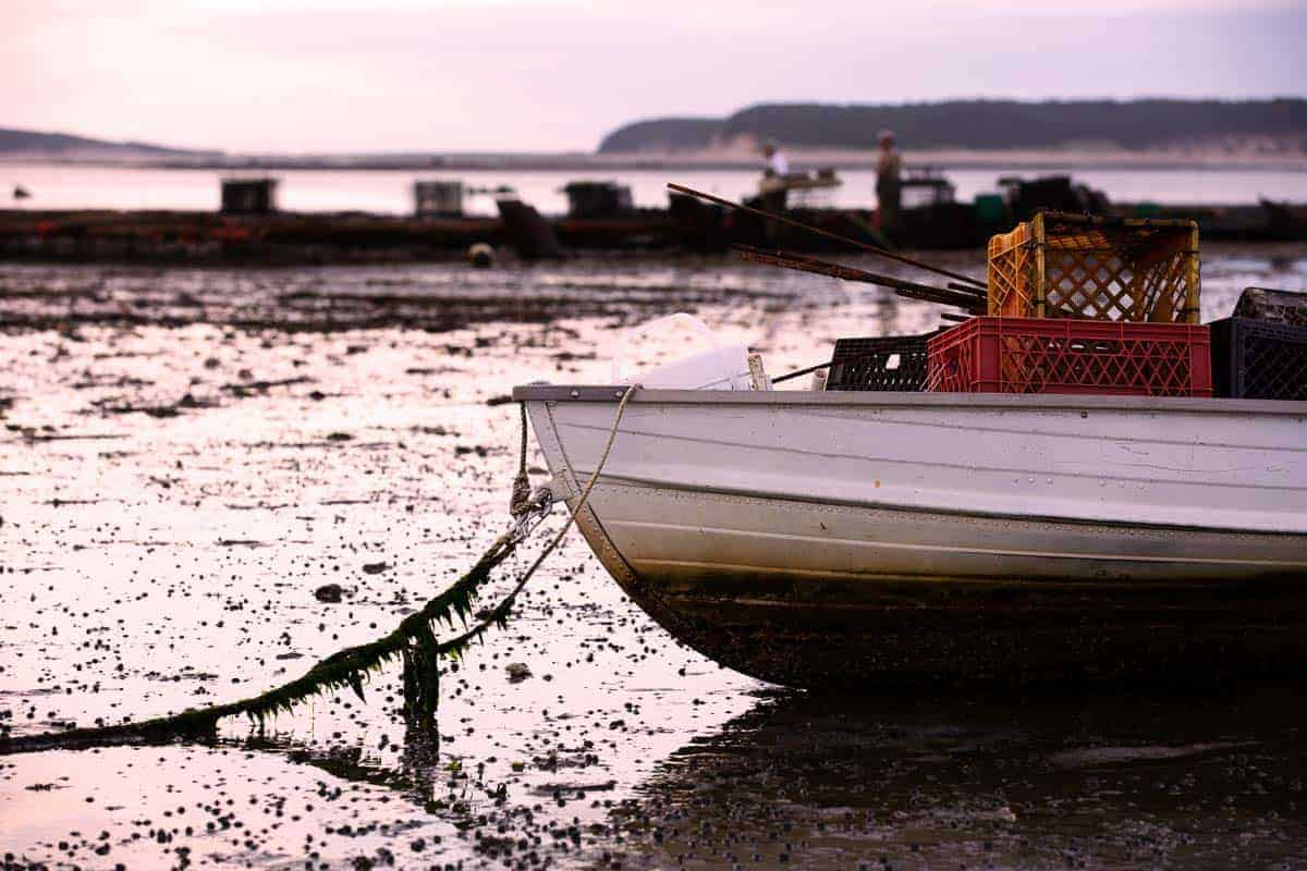 A boat moored and an oyster man working in the background in Wellfleet