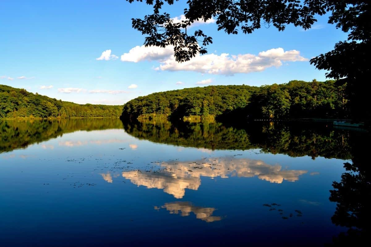 Benedict Pond in Bear Town State Forest in Massachusetts