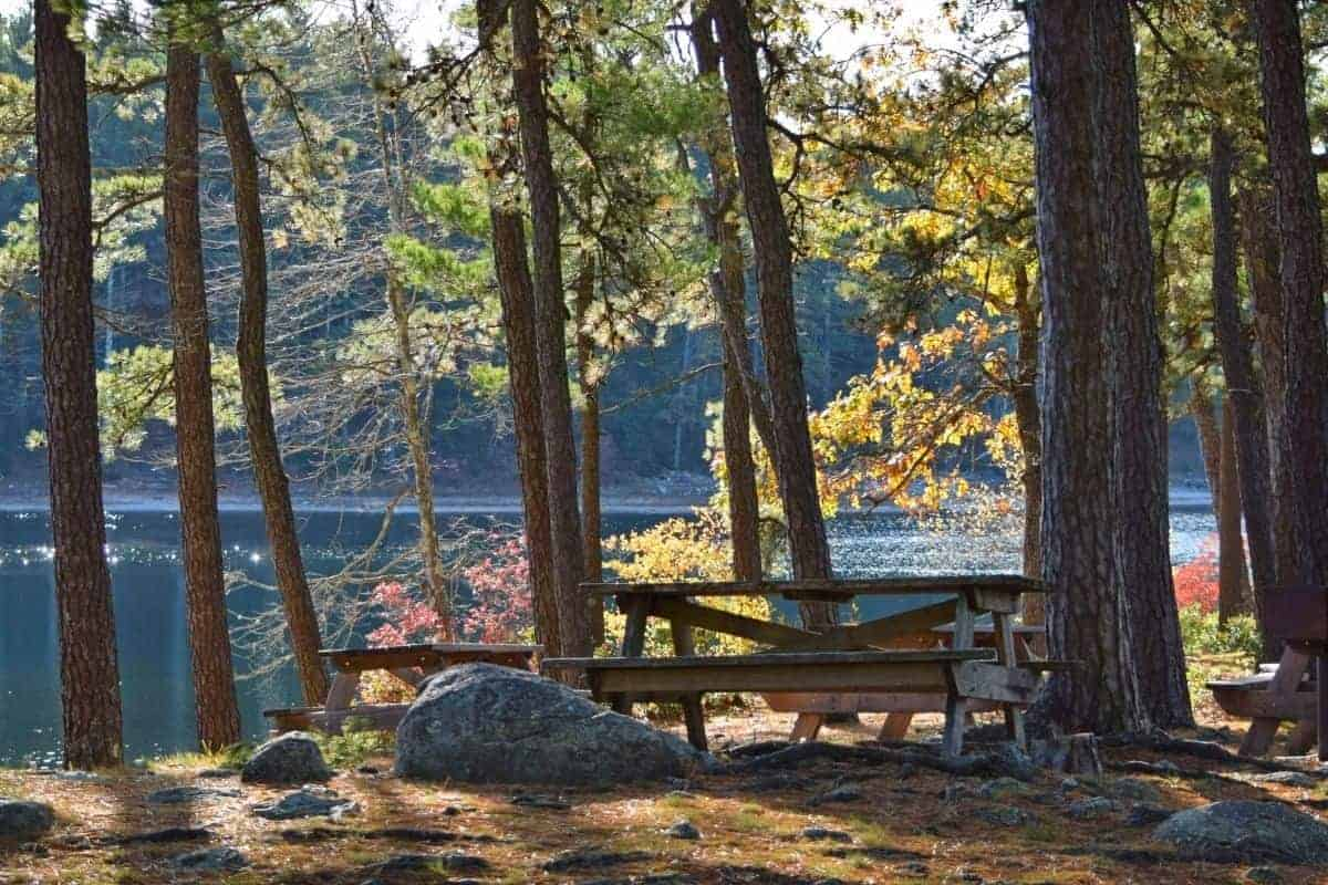 picnic bench at Myles Standish state forest in Massachusetts