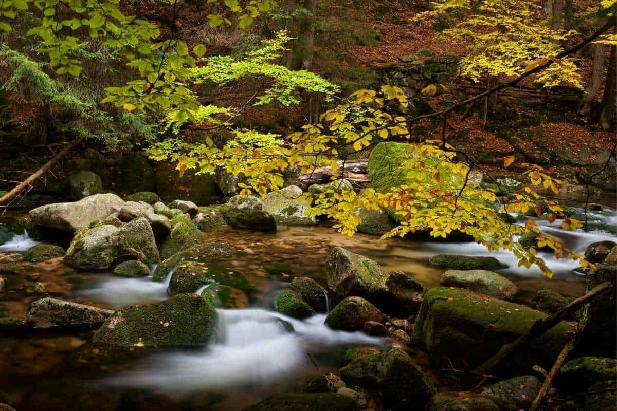 water swirling around rocks at October Mountain State Forest in Lee Massachusetts