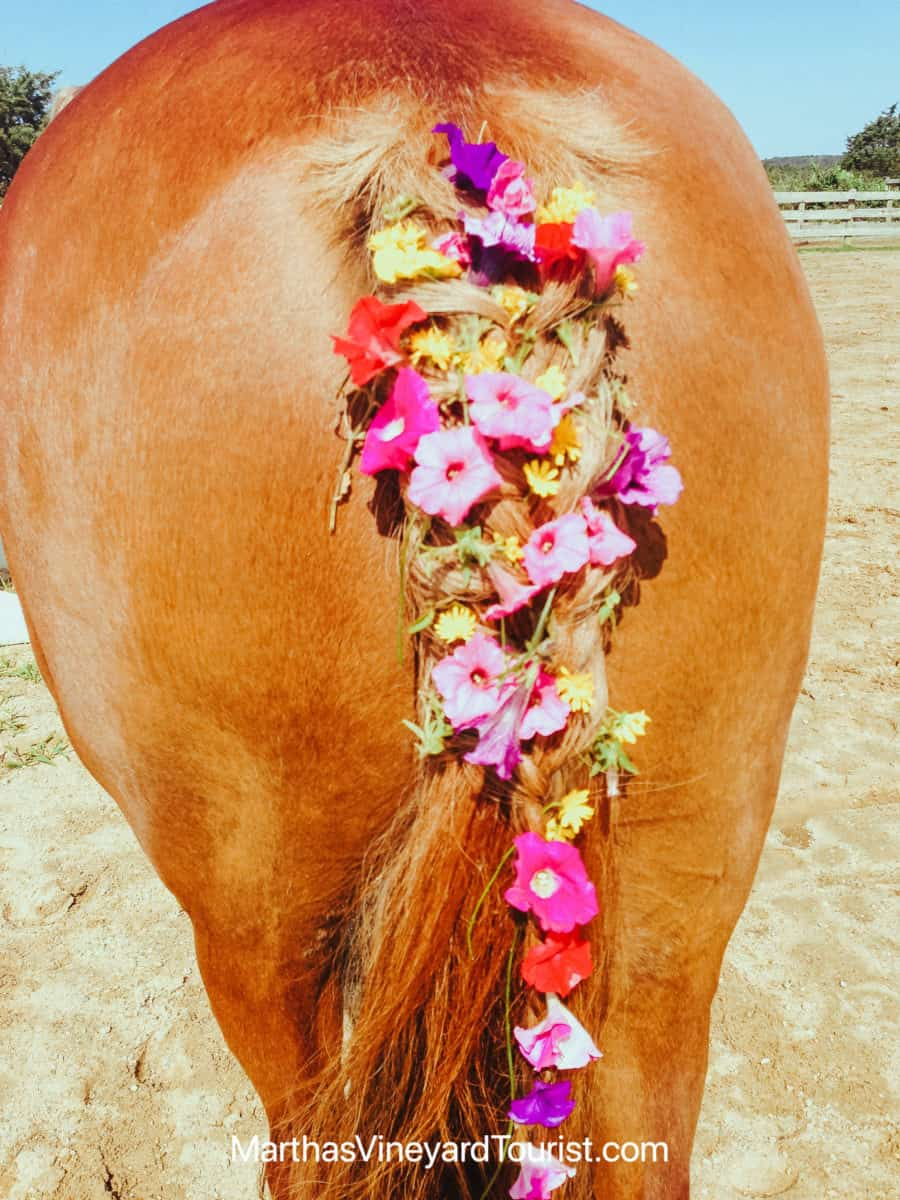 pink and yellow flowers on a braided horse tail