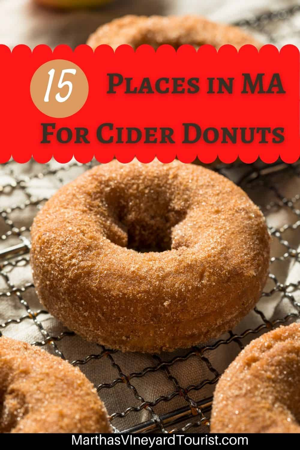 """Pinterest pin of apple cider donuts on a tray with sugar  and the text: """"15 Places in MA for Cider Donuts"""""""